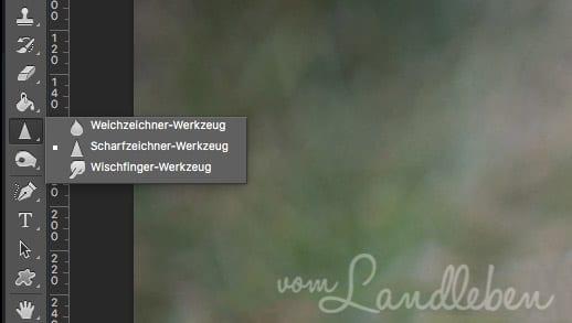 Photoshop: gezieltes Nachschräfen mit dem Scharfzeichner-Werkzeug