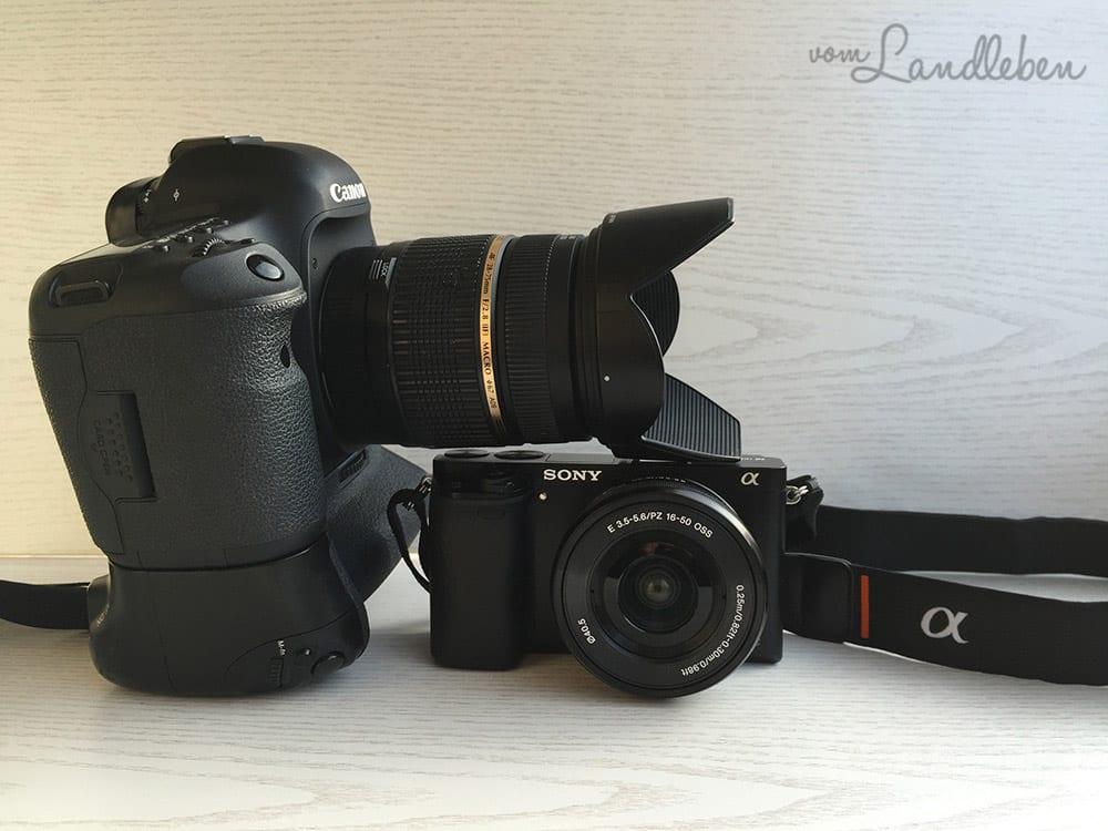 Canon 5D Mk III vs. Sony alpha 6000
