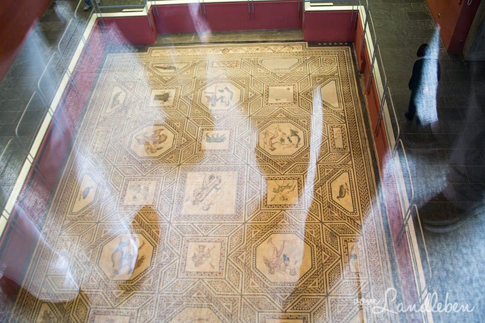 Das Dionysosmosaik im Römisch-Germanischen Museum
