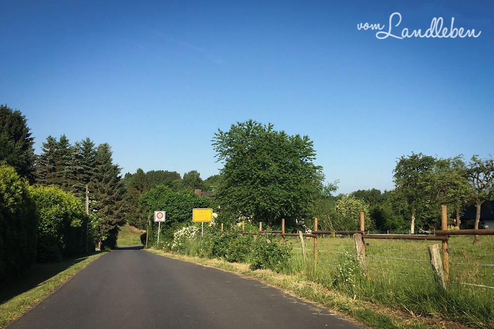Rechts hinter der Weide, auf Höhe des Ortsschilds, beginnt unser Grundstück