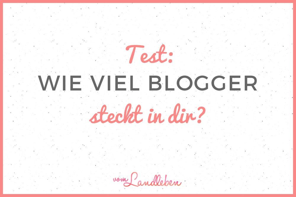 Test: wie viel Blogger steckt in dir?