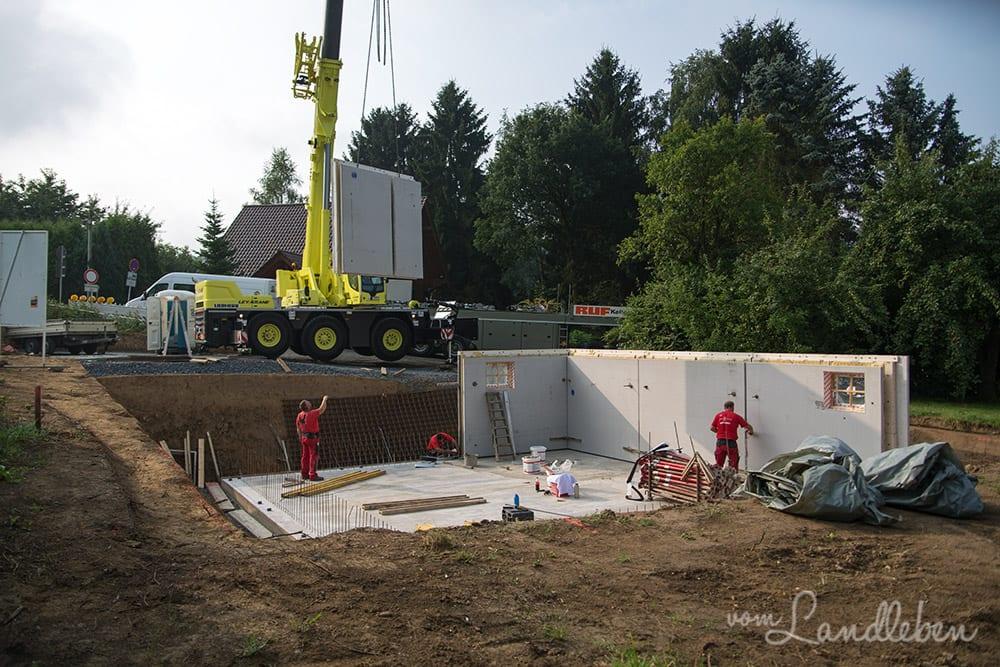 Kellerbau mit glatthaar - Projekt Hausbau