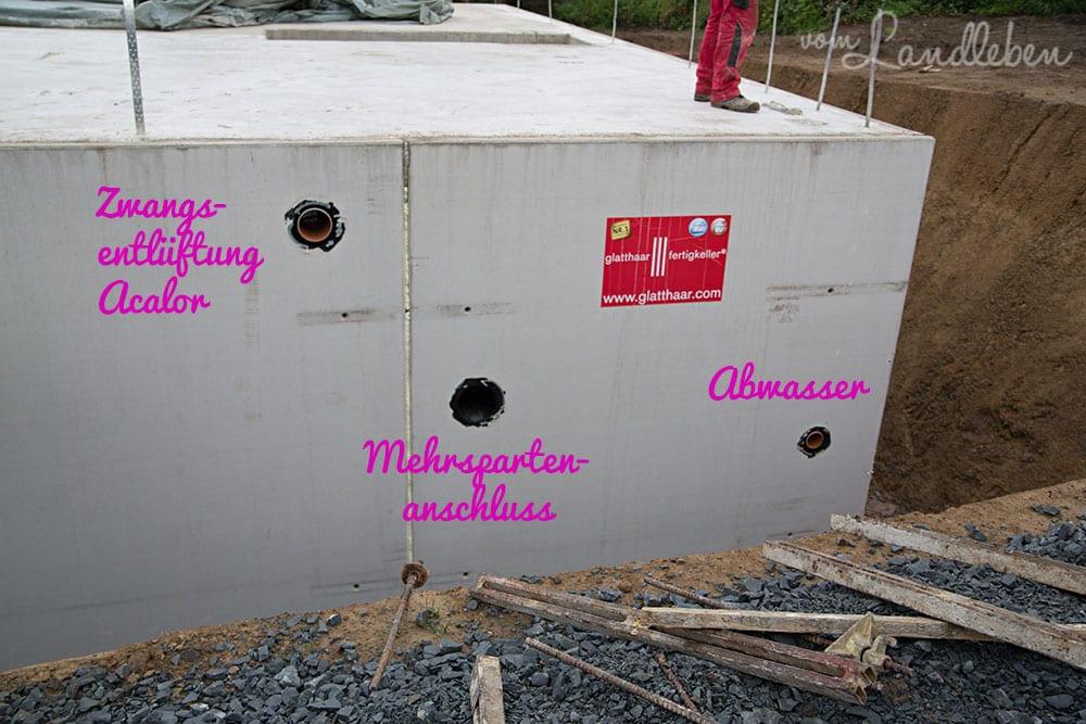 Kellerbau mit glatthaar