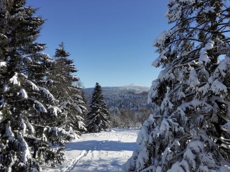 Der Harz im Winter - Foto (c) Lisa Bönemann, harz-region.de
