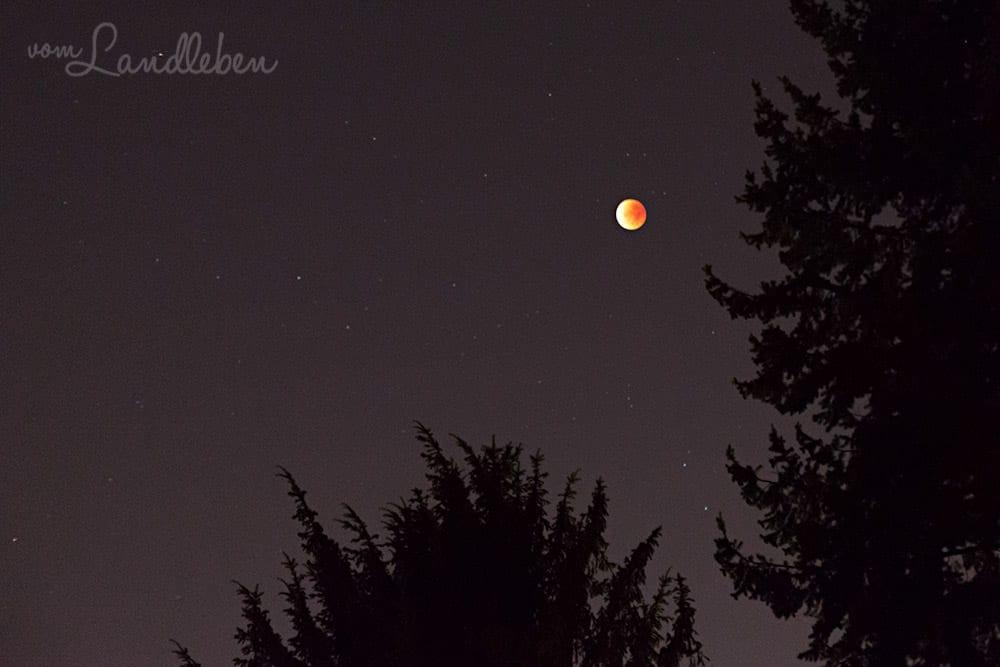 #fotoprojekt17 - nachts: Blutmond (28.9.2015)