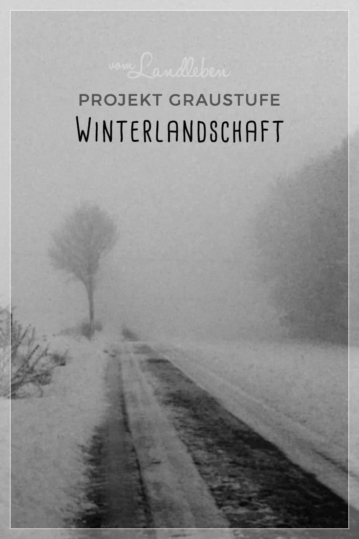 Projekt Graustufe: Winterlandschaft