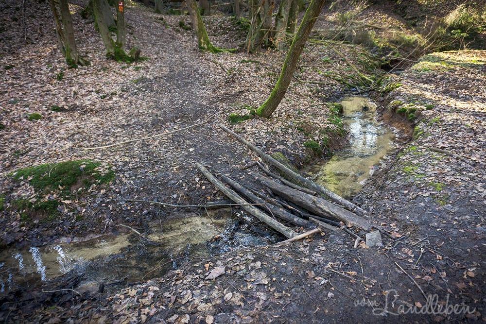 Wanderung an der Wahnbachtalsperre