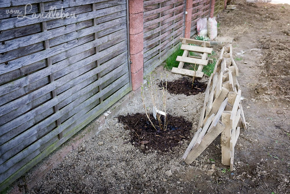 Gartenguckloch - unser Garten im März 2017