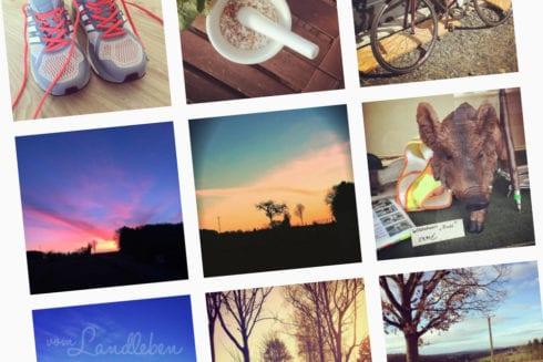 vom Landleben auf Instagram