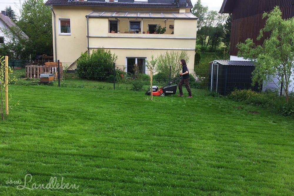 Das erste Mal Rasenmähen in unserem Garten