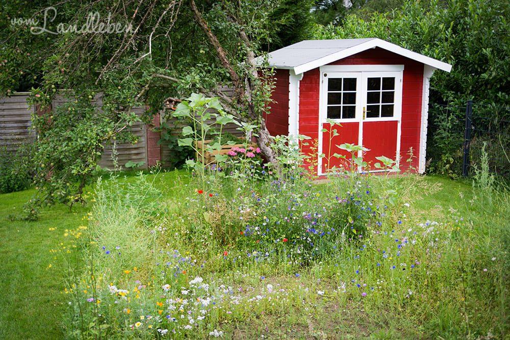 Unser Gartenguckloch im Juni 2017