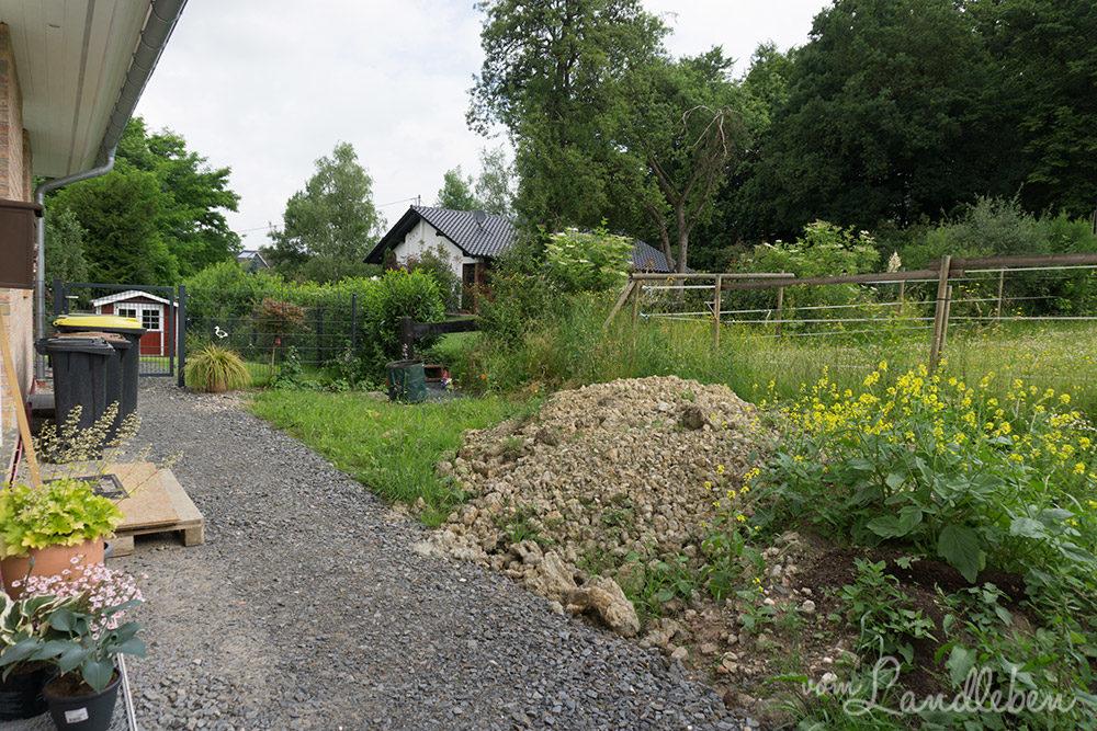 Der Mittelgarten im Juni 2017