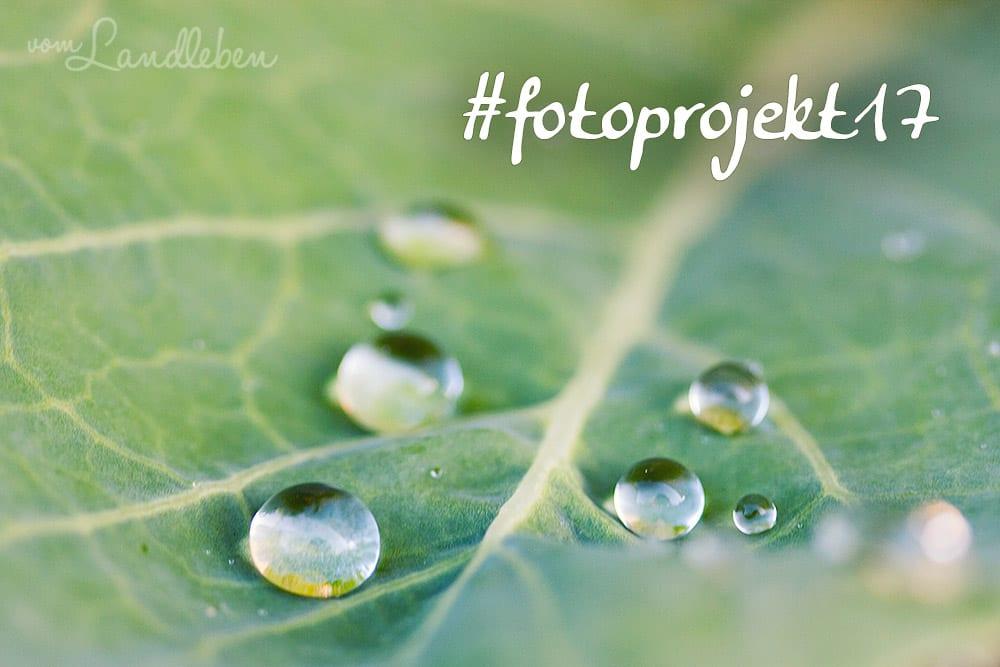#fotoprojekt17 - Wasser