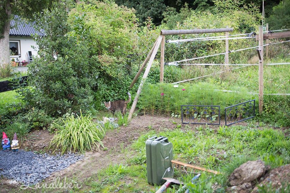 Gartenguckloch im Juli 2017