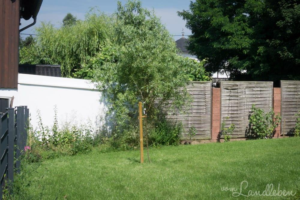 """""""Wilde Ecke"""" im Garten im Juli 2017"""