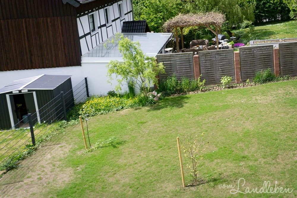 """""""Wilde Ecke"""" im Garten - Mai 2017"""