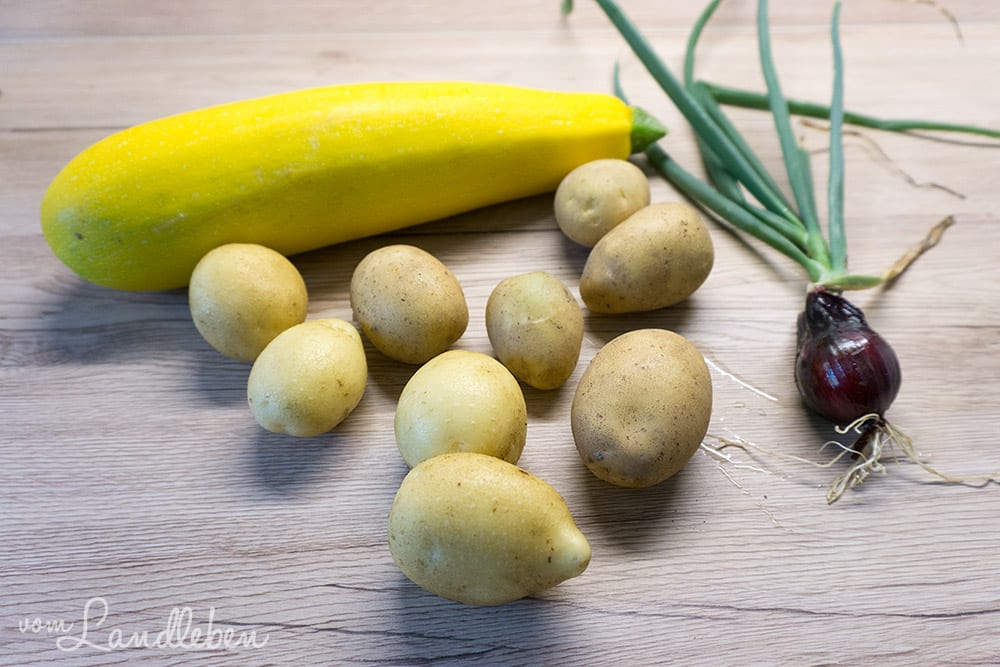 Zucchini, Kartoffeln und Zwiebeln aus eigener Ernte