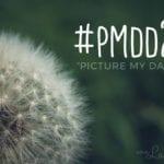 """#pmdd24 – Das war mein """"Picture my Day""""-Day"""