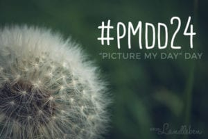 #pmdd24