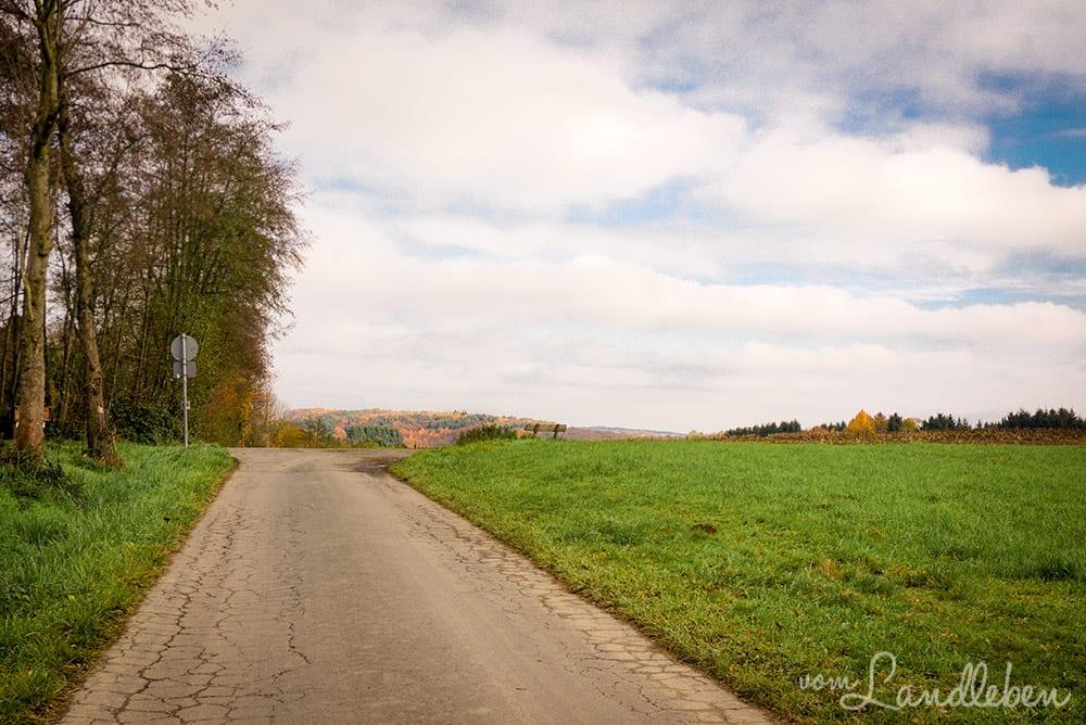 Laufstrecke Herbst 2017