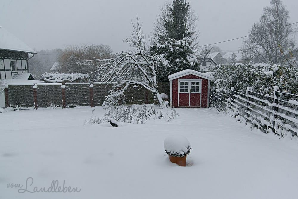 Gartenguckloch im Dezember 2017