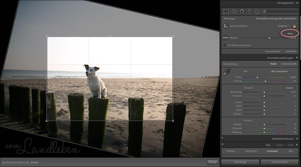 Workflow beim Fotografieren – Lightroom