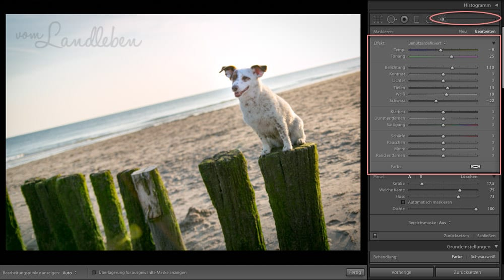 Workflow beim Fotografieren – Lightroom