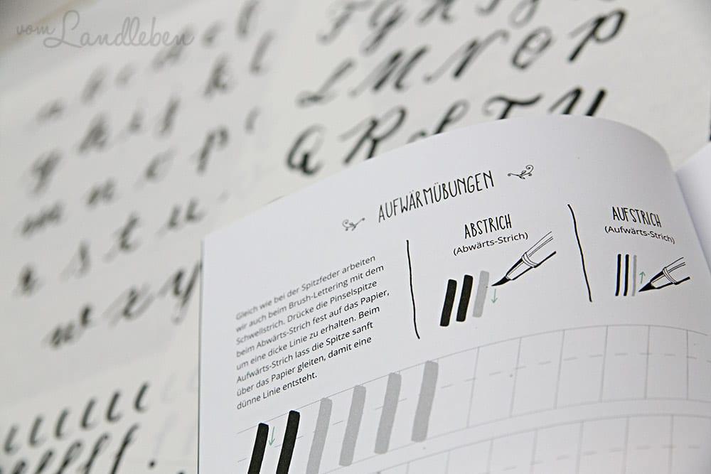 Rezension Handlettering Schöne Schriften Schritt Für Schritt
