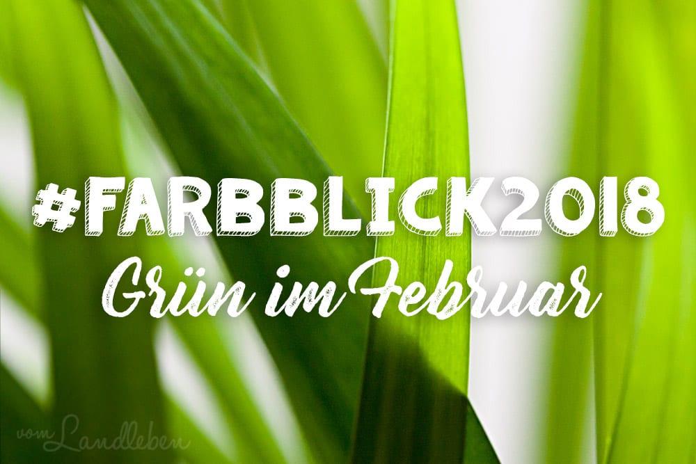 #Farbblick2018 – Grün – Areca-Palme Makro