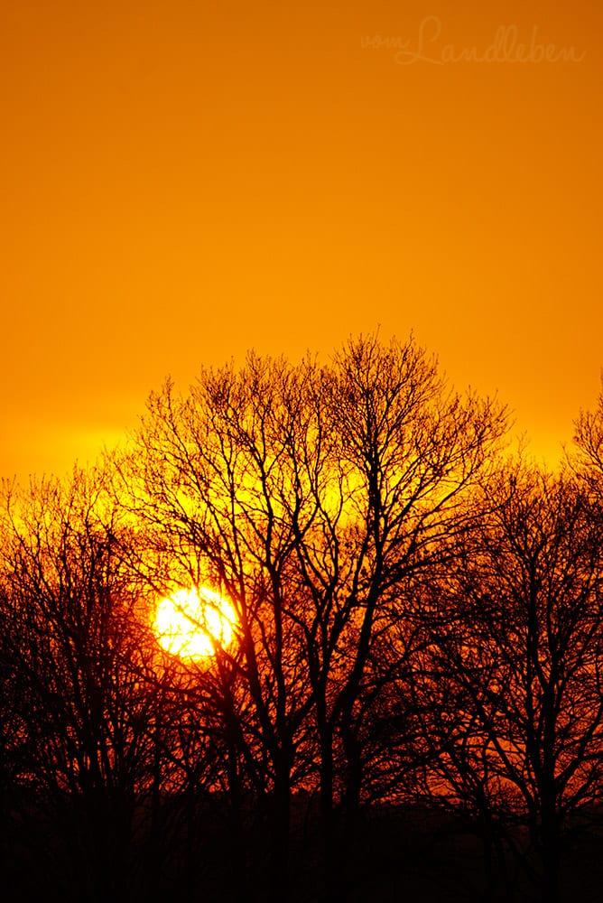 Sonnenuntergang – Februar 2018