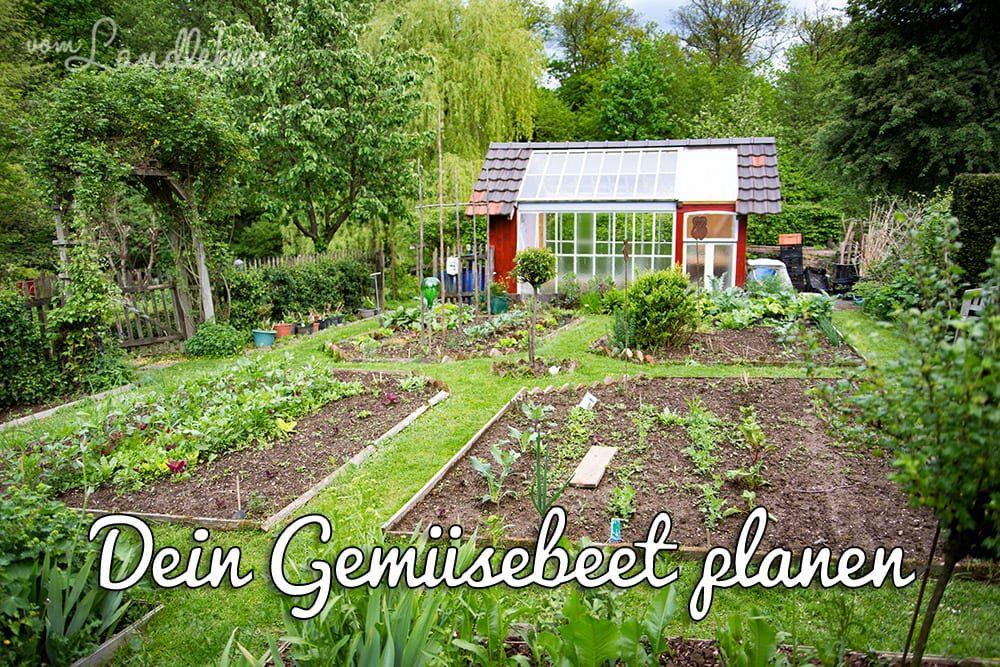So kannst du dein Gemüsebeet planen | vom Landleben