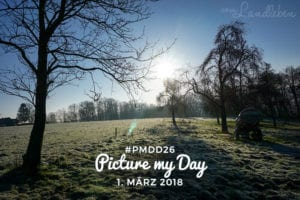 #pmdd26 – Picture my Day Day am 1. März 2018