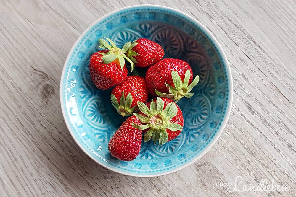 Erdbeeren aus eigener Ernte