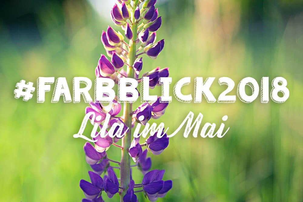 #Farbblick2018 – Lila im Mai