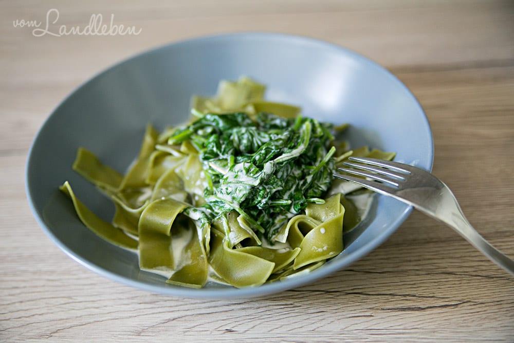 Nudeln mit Spinat-Gorgonzola-Soße