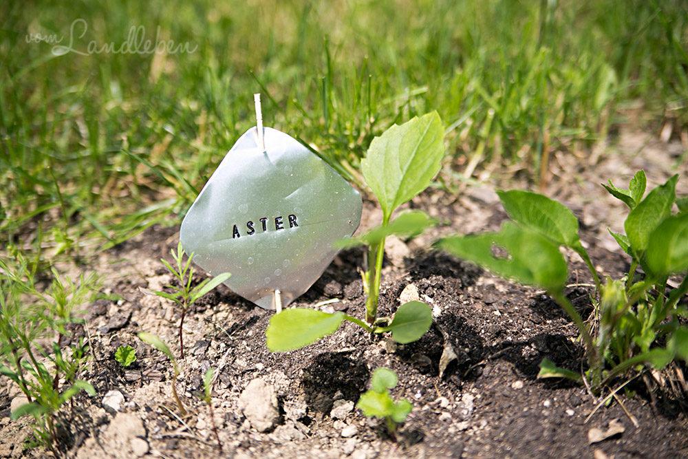 DIY-Pflanzenstecker mit Schlagbuchstaben