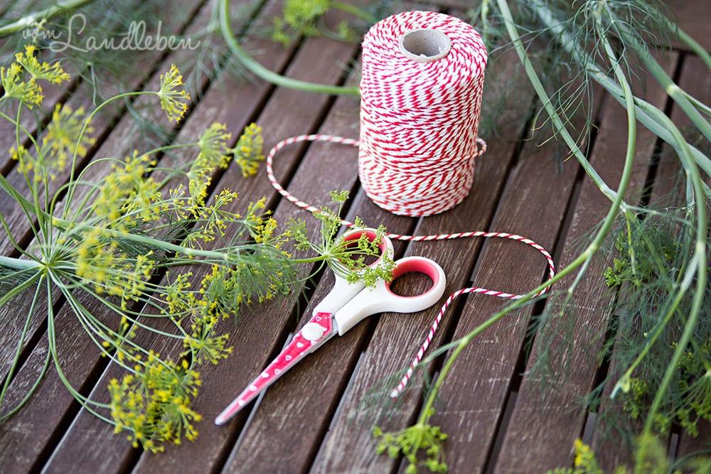 Dill trocknen – Kräutersträußchen binden