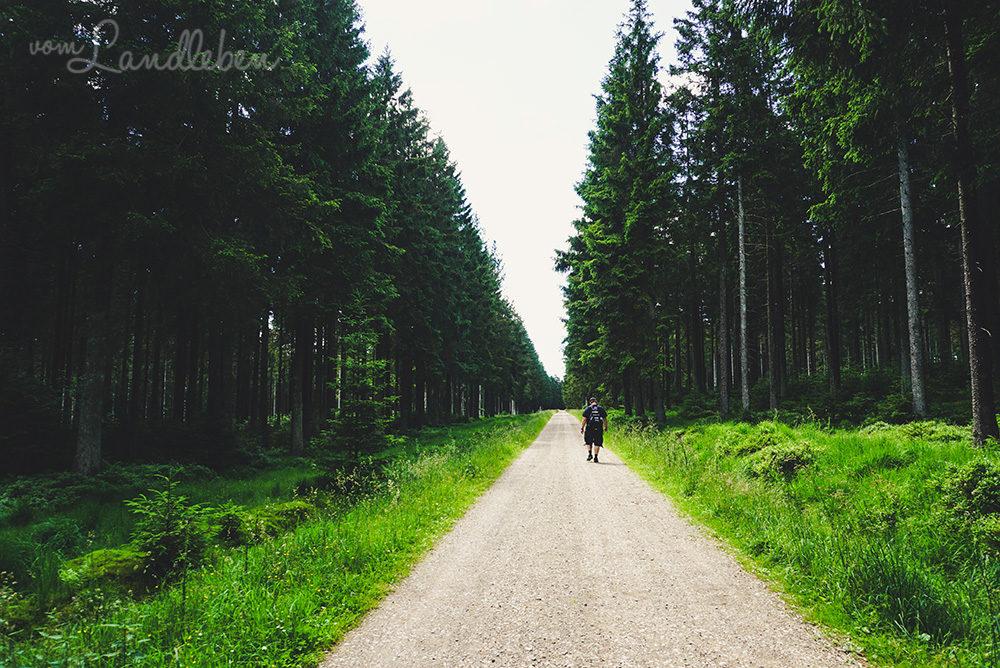 Wandern im Hohen Venn