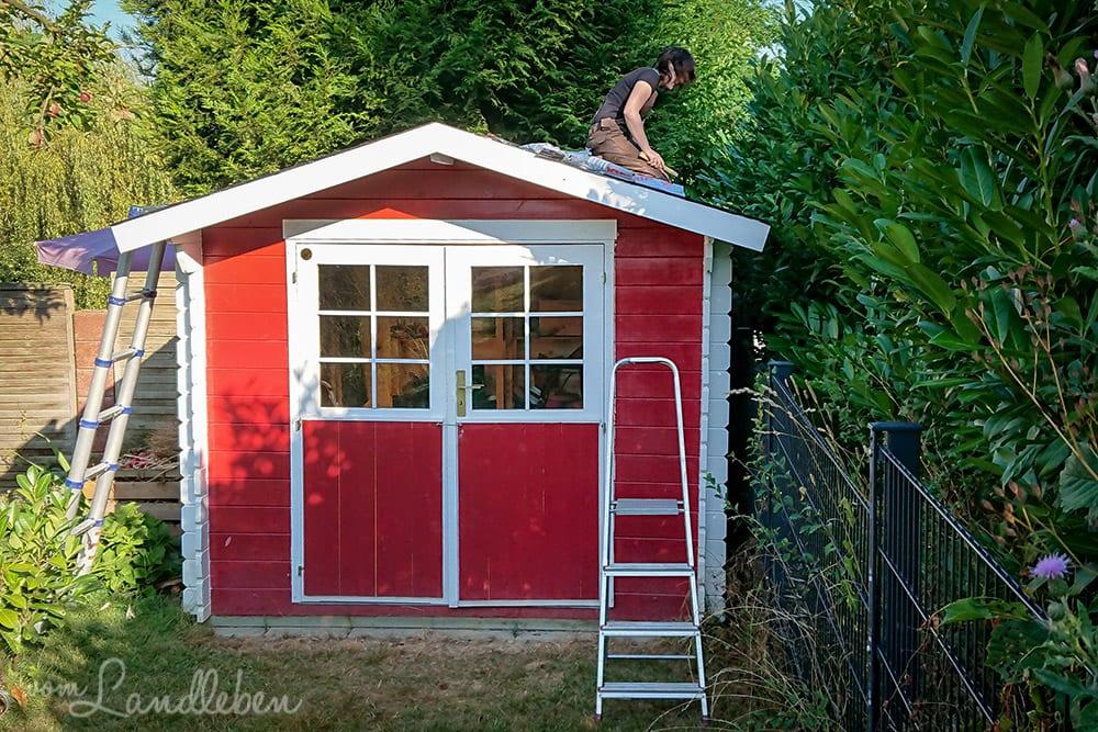 das dach vom gartenh uschen selber decken vom landleben. Black Bedroom Furniture Sets. Home Design Ideas