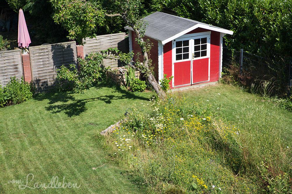 Garten im Juli 2018