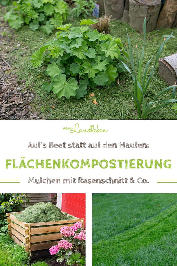 Mulchen mit Rasenschnitt: Flächenkompostierung