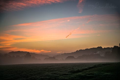Herbstspaziergang 2018 - Sonnenaufgang bei Nebel