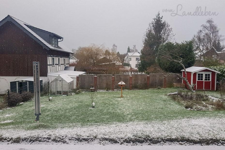 Unser Garten im Dezember 2018