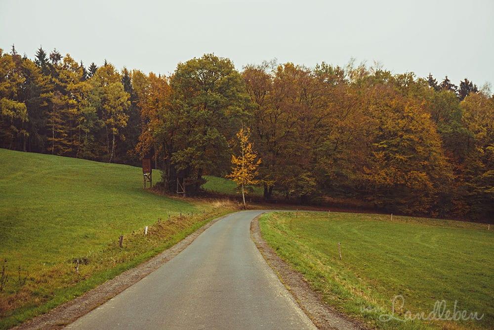 Landschaft bei Nümbrecht