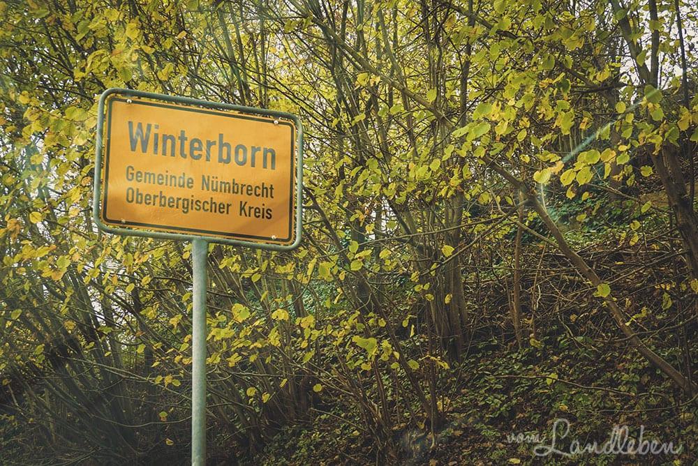 Winterborn - Nümbrecht
