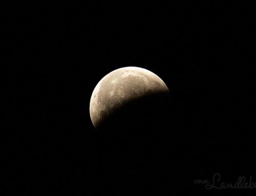Blutmond – Mondfinsternis im Januar 2019