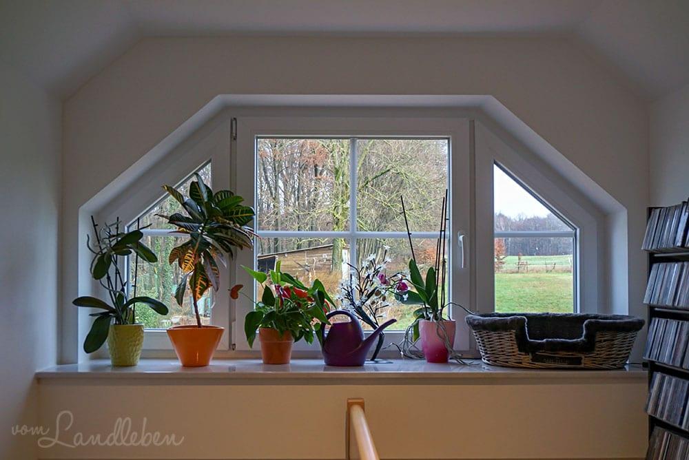Fenster in der Gaube in unserem Danhaus