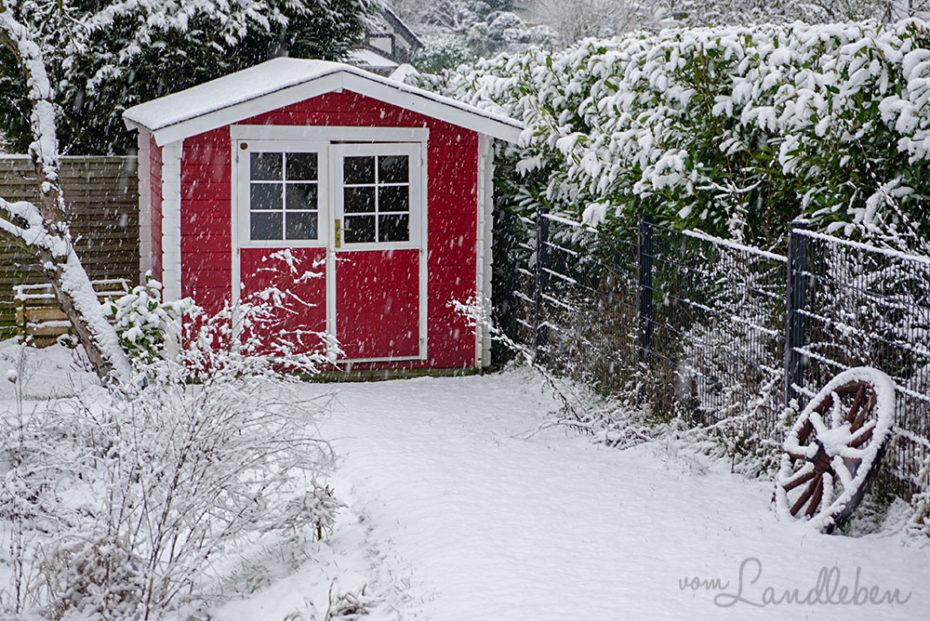 Schnee im Garten - Januar 2019