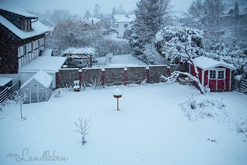 Schnee - Januar 2019