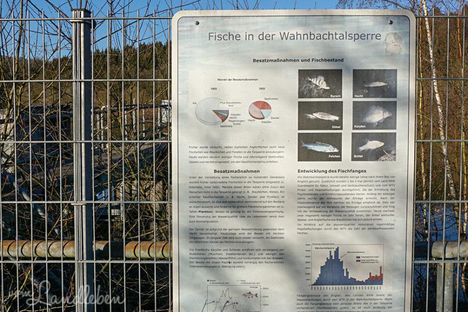 Infotafeln am Vordamm der Wahnbachtalsperre
